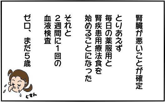 133-c002.jpg